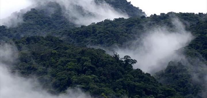 Costa Rica on see aasta kasutanud ainult taastuvaid energiaallikaid